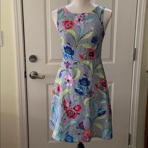 Ann Taylor Jungle Floral Flare Dress (NWT)